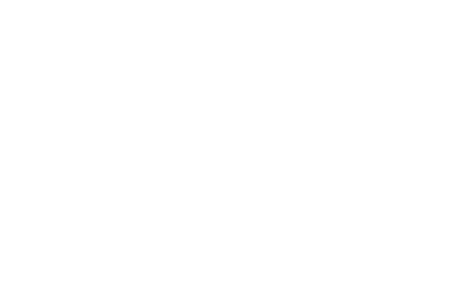 riskwell logo all white